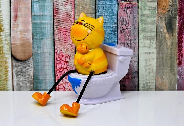 kočka na wc