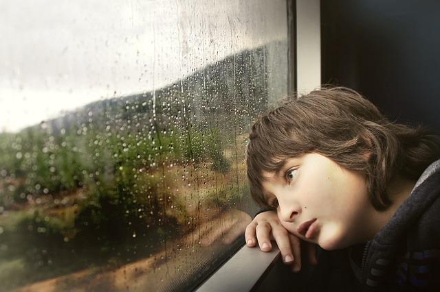 výhled z vlaku