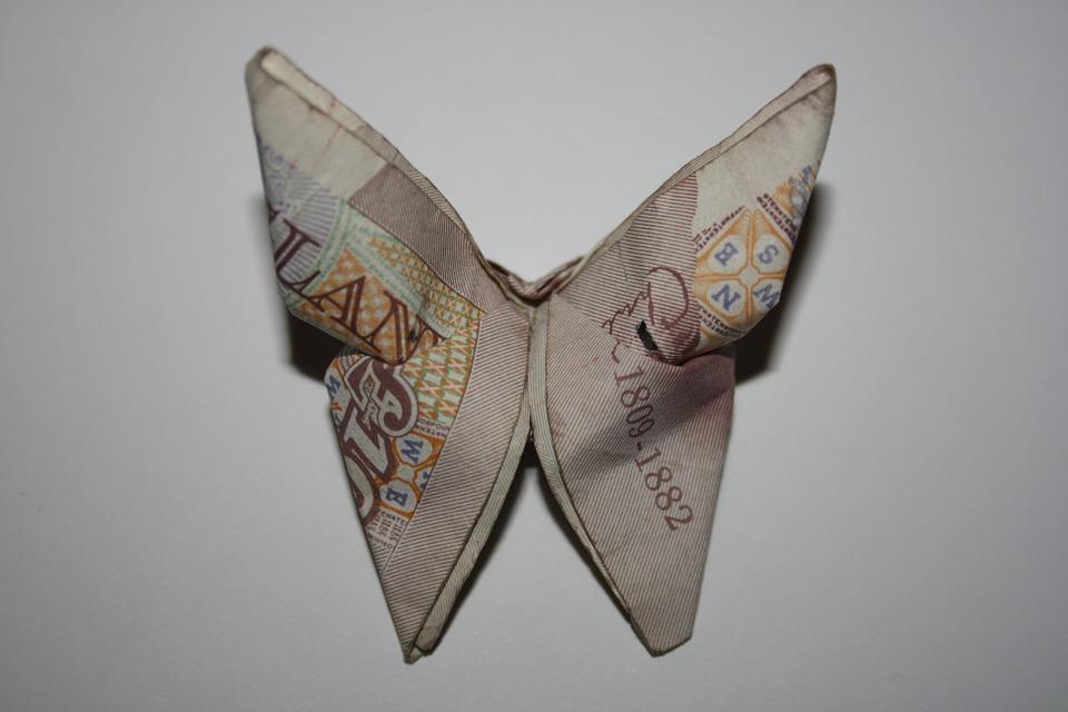 motýl z bankovky